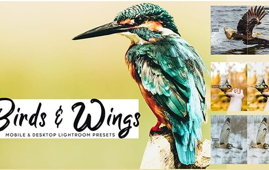 Birds and Wings Lightroom Presets Free Download