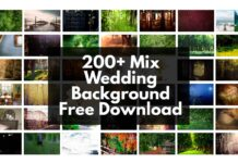 200+ Mix Wedding Background Free Download